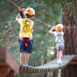 Be the King of the Swingers at Go Ape!