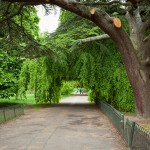 LONDON PARKS YOU HAVE TO VISIT