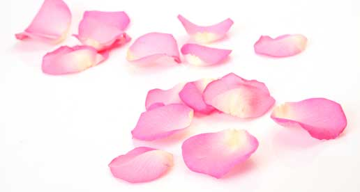 Rose Petals Turn Down Service